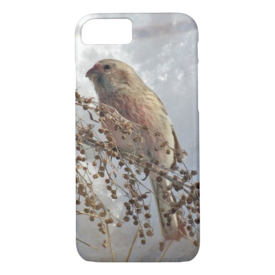 linnet iPhone 8/7 case