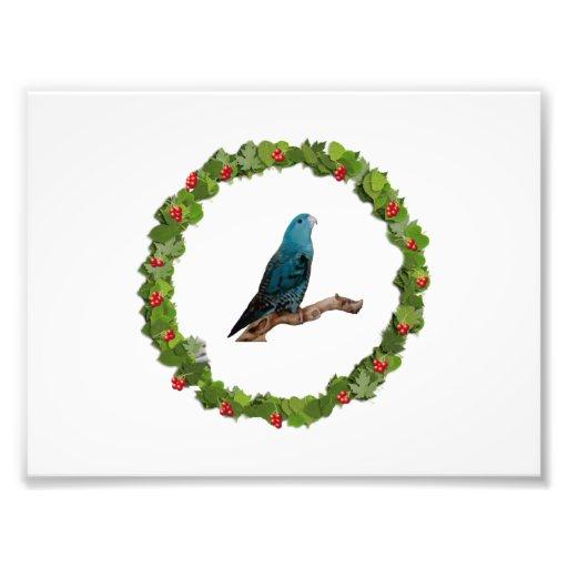 Linnie Christmas Wreath Photograph
