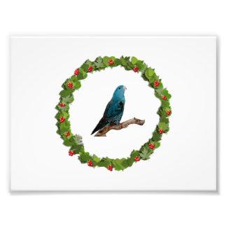 Linnie Christmas Wreath Photo Print