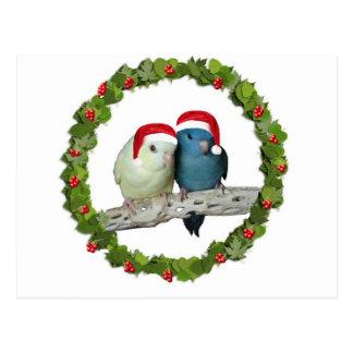 Linnie Christmas wreath Postcards