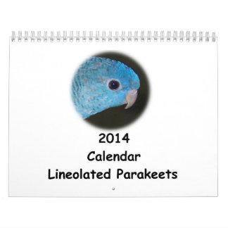 Linnie Parakeet 2014 Calendar