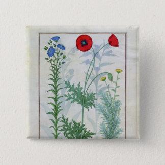 Linum, Garden poppies and Abrotanum 15 Cm Square Badge