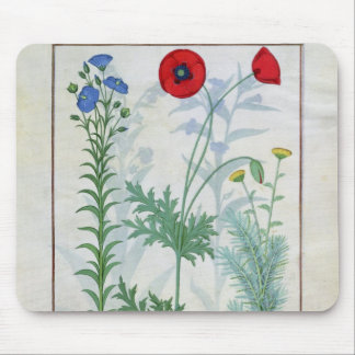 Linum, Garden poppies and Abrotanum Mouse Mat