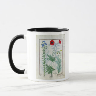 Linum, Garden poppies and Abrotanum Mug