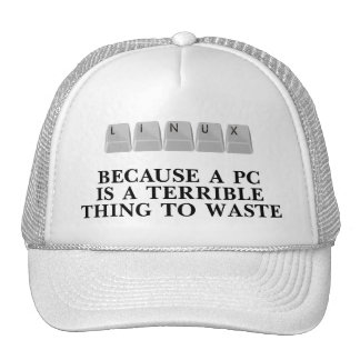 Linux, because a PC is a terrible thing to waste Cap
