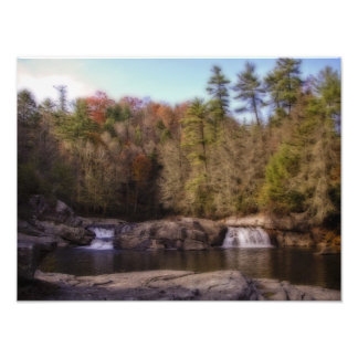 Linville Falls Woodland Photo Print