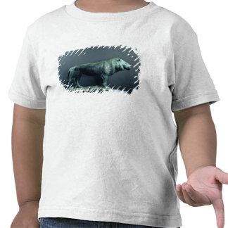 Lion, 1904 t-shirts