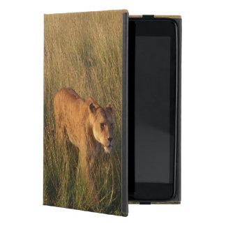 Lion 2 case for iPad mini