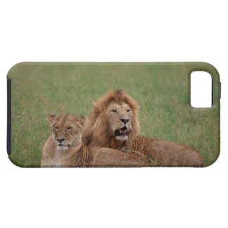 Lion 2 case for the iPhone 5