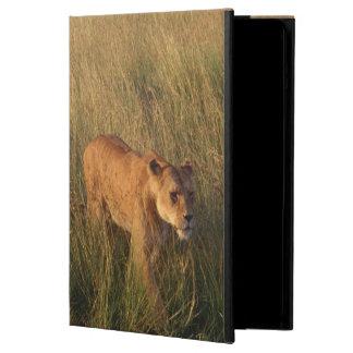 Lion 2 iPad air case