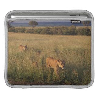 Lion 2 iPad sleeve