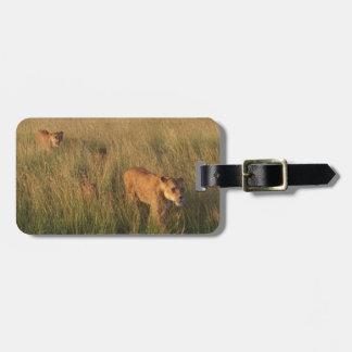 Lion 2 luggage tag
