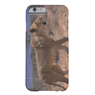 Lion 3 barely there iPhone 6 case