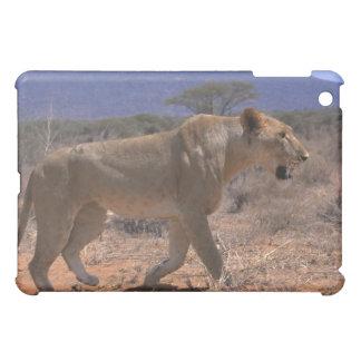 Lion 3 iPad mini cases