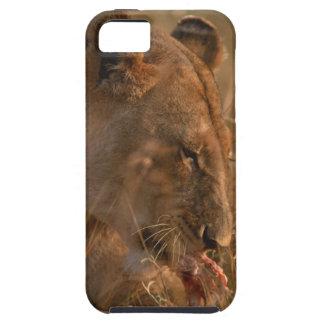 Lion 3 tough iPhone 5 case