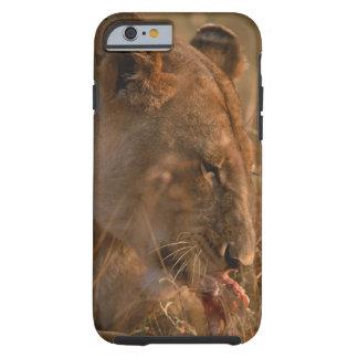 Lion 3 tough iPhone 6 case