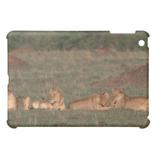 Lion 4 cover for the iPad mini