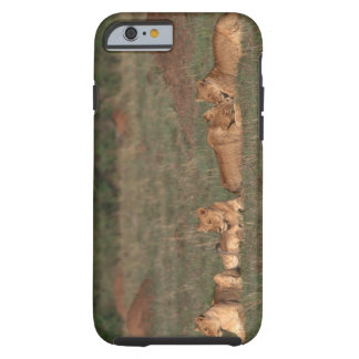 Lion 4 tough iPhone 6 case