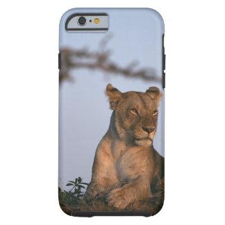 Lion 4 tough iPhone 6 case