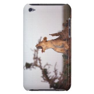 Lion 7 iPod Case-Mate case