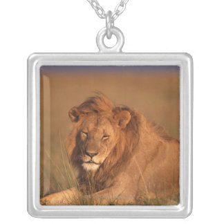Lion 8 silver plated necklace