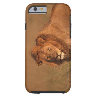 Lion 8 tough iPhone 6 case
