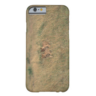Lion 9 barely there iPhone 6 case