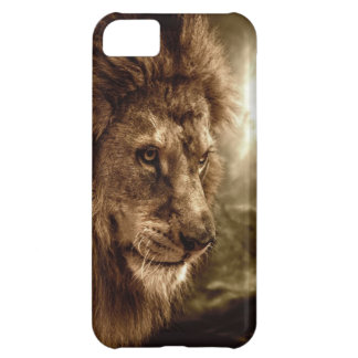Lion against stormy sky iPhone 5C case