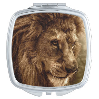Lion against stormy sky makeup mirror