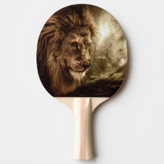Lion against stormy sky ping pong paddle