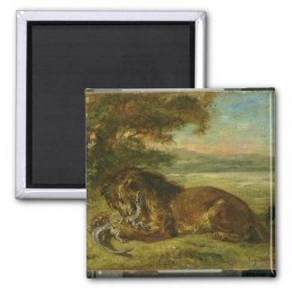 Lion and Alligator, 1863 Square Magnet