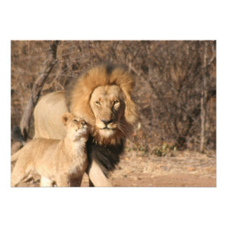 Lion and Cub Invitation