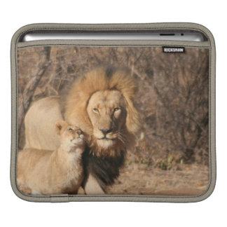 Lion and Lion Cub iPad Sleeve