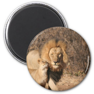 Lion and Lion Cub Magnet Refrigerator Magnet
