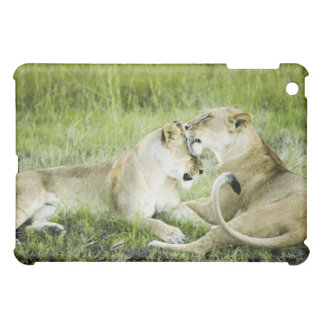Lion and lioness, Africa 2 Cover For The iPad Mini