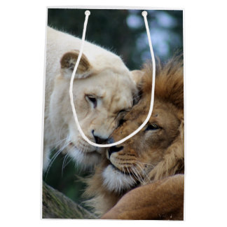 Lion and Lioness Medium Gift Bag
