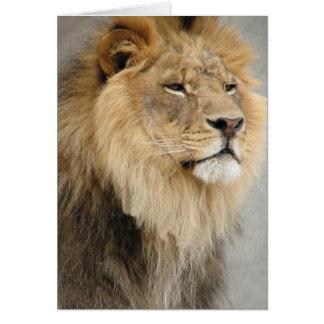 lion art greeting cards