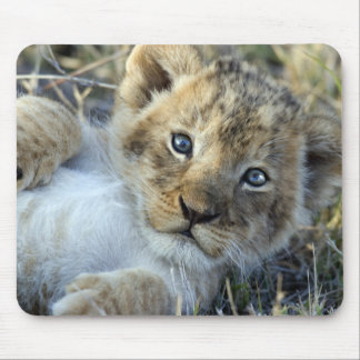 Lion baby mouse mat