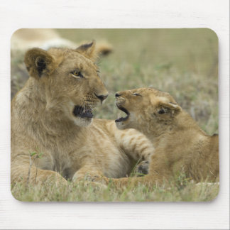 Lion Brother Mouse Mat
