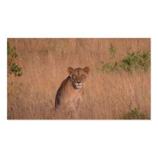 Lion Business Cards