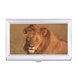 Lion Business Card Holder