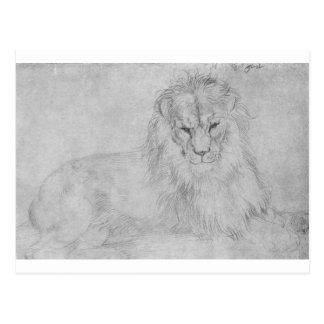 Lion by Albrecht Durer Postcard