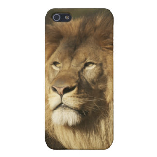 Lion Case For iPhone 5/5S