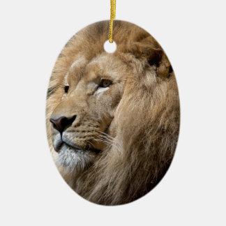 Lion Ceramic Oval Decoration