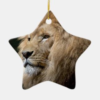 Lion Ceramic Star Decoration