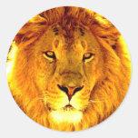 Lion Classic Round Sticker
