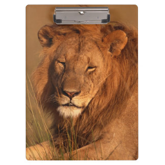 Lion Clipboard