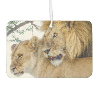 Lion Couple Air Freshener