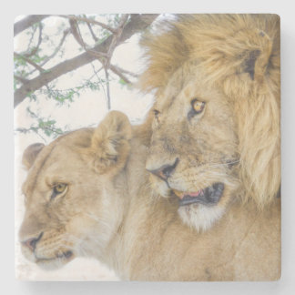 Lion Couple Stone Coasters