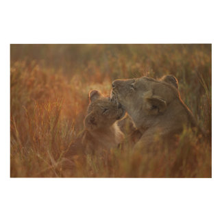 Lion Cub and Parent Wood Wall Art